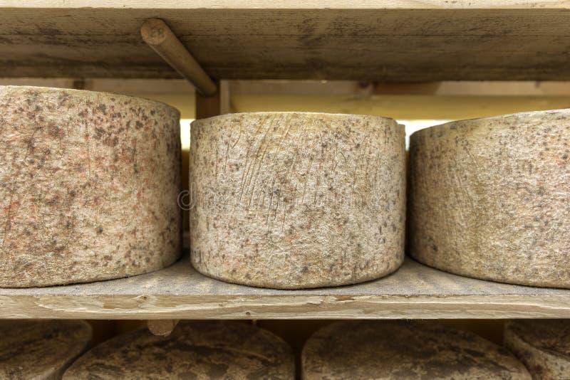 Procedimento de fabricação número do queijo 10 fotografia de stock royalty free