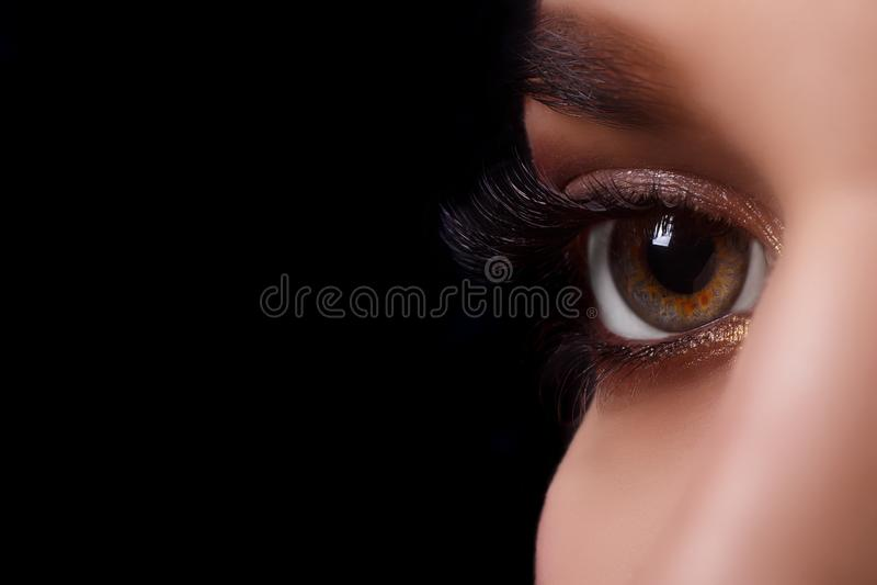 Procedimiento de la extensión de la pestaña Ojo de la mujer con las pestañas largas después del procedimiento de la extensión Pes fotografía de archivo