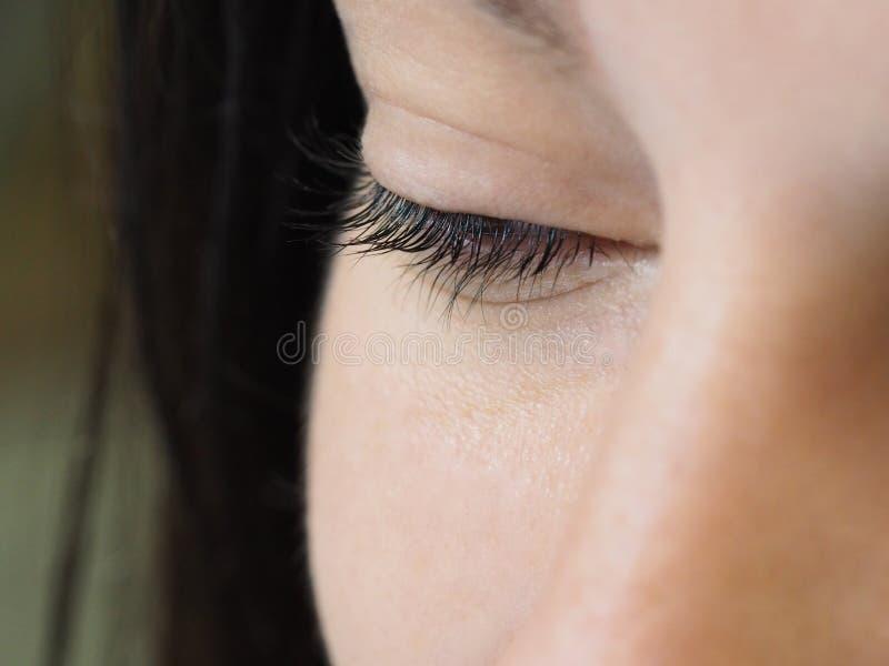 Procedura cosmetica per la cura dei cigli Il risultato di tintura, di ondeggiamento e di laminazione dei cigli fotografie stock libere da diritti