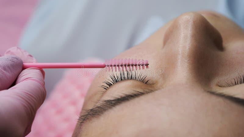 Procedura di estensione del ciglio Occhio della donna con i cigli lunghi fotografia stock