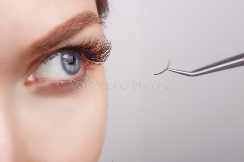 Procedura di estensione del ciglio Occhio della donna con i cigli lunghi Sferze, fine su, fuoco selezionato fotografia stock libera da diritti