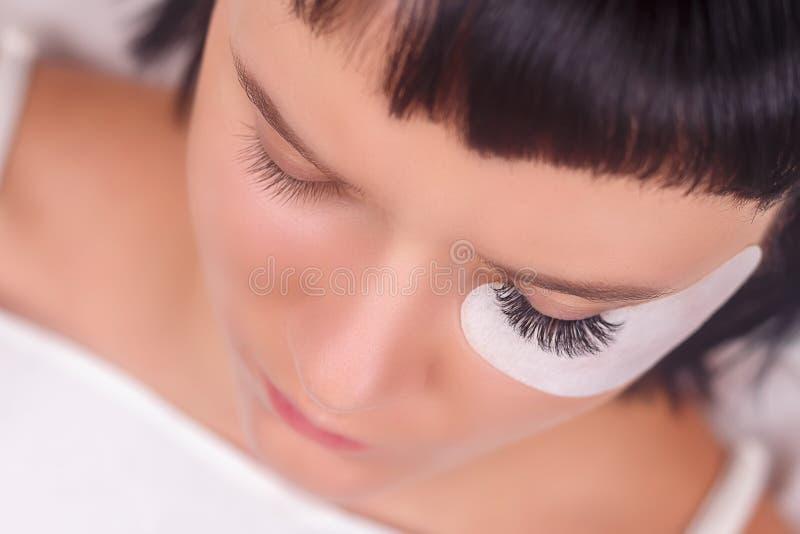 Procedura di estensione del ciglio Occhio della donna con i cigli lunghi Sferze, fine su, fuoco selezionato immagine stock libera da diritti
