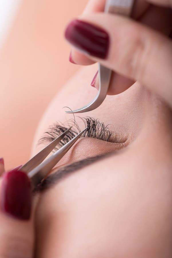 Procedura di estensione della sferza al salone di bellezza immagine stock