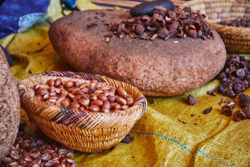 Proces van traditionele productie van Marokkaanse maagdelijke argan olie stock fotografie