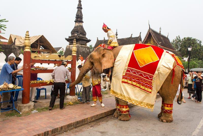 Procesión del elefante para Lao New Year 2014 en Luang Prabang, Laos imagenes de archivo