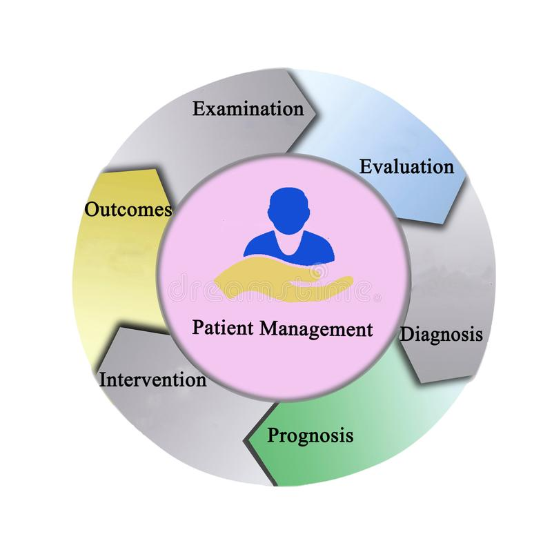 Process of Patient Management. Six components of Patient Management royalty free stock photo