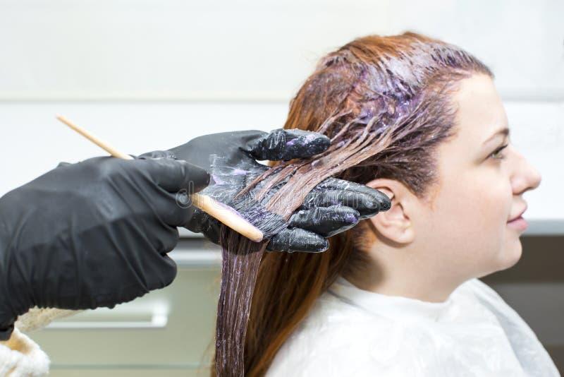 Processar som färgar hår royaltyfri bild