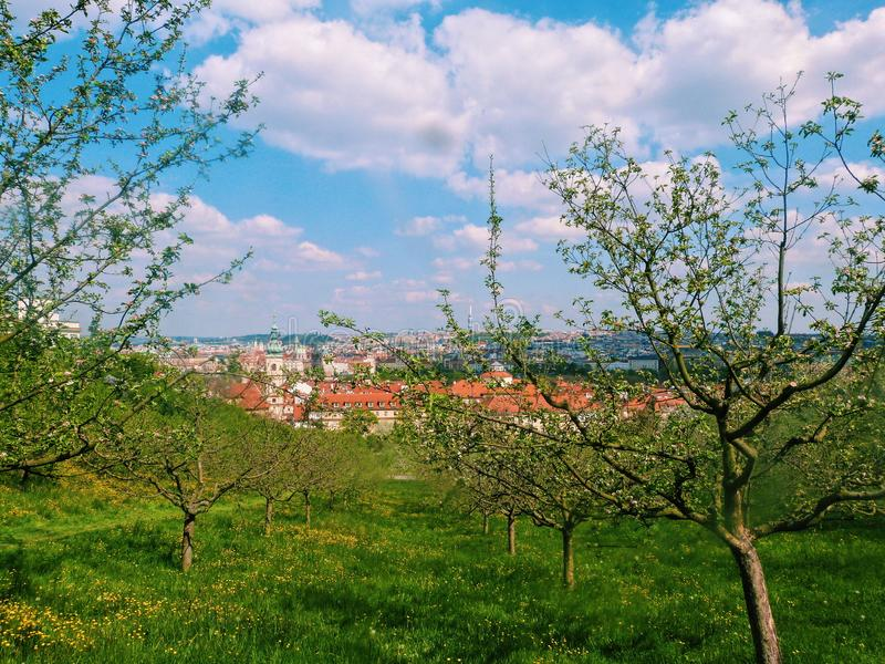 View of the green Prague, Czech Republic royalty free stock images