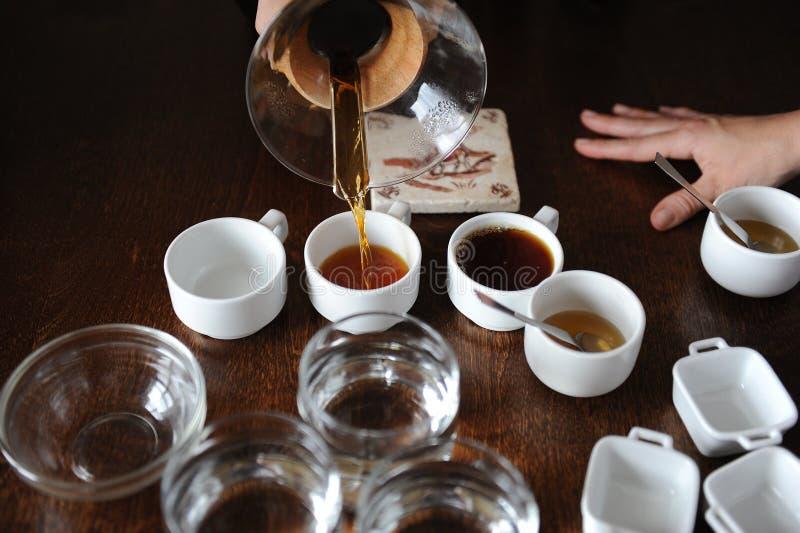 Processen av att kupa för kaffe Kaffe hälls in i avsmakningkoppar fotografering för bildbyråer