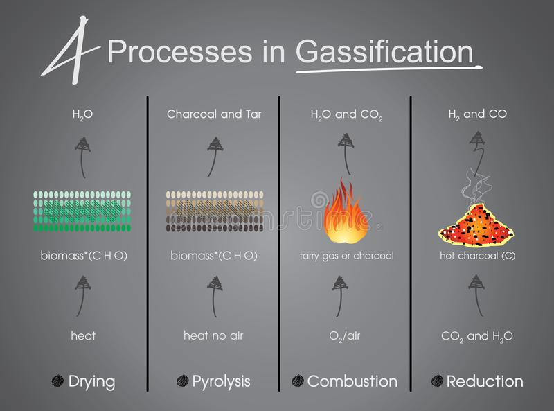 Processes in Gasification Drying, Pyrolysis, Combustion, Reduct vector illustration