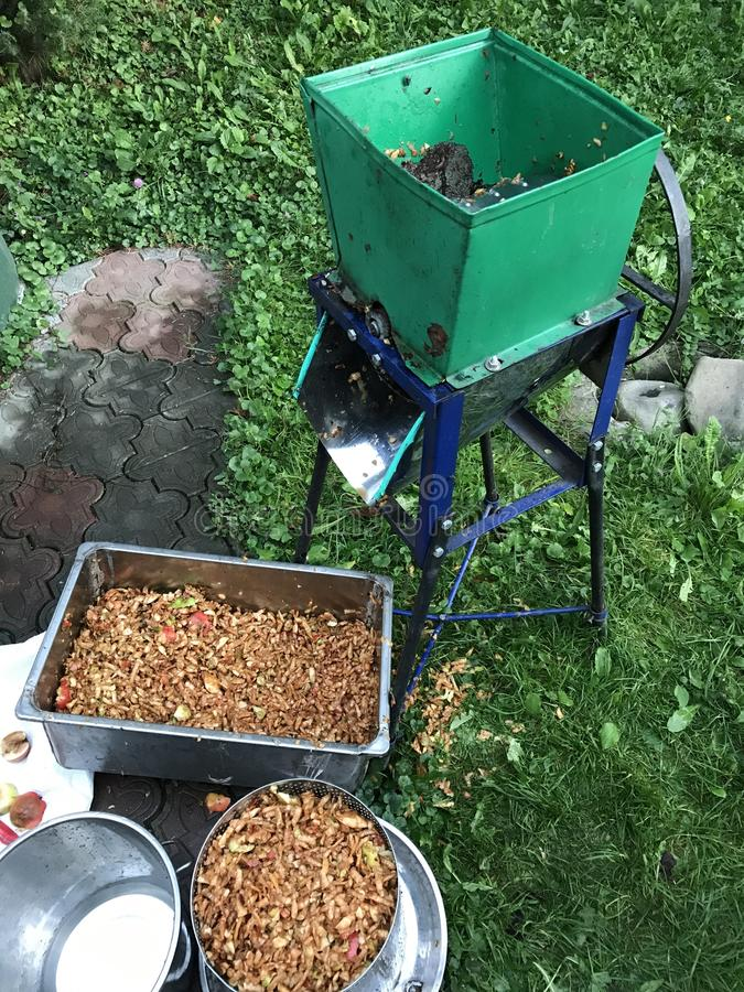 Processing of apples for juice production. A mechanical grinder for grinding apples, filled with juicy fruits. Manual drive stock images
