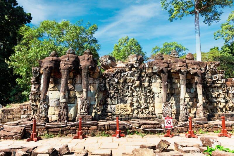 Procession of elephants on the Elephant Terrace, Angkor Thom, Cambodia royalty free stock photo