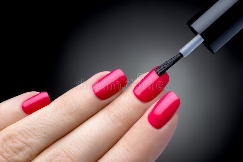 Processo bonito do tratamento de mãos. O verniz para as unhas que está sendo aplicado à mão, polimento é uma cor cor-de-rosa. fotos de stock