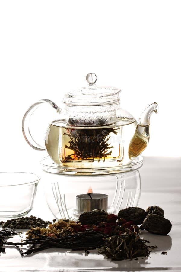 Processo da preparação do chá foto de stock
