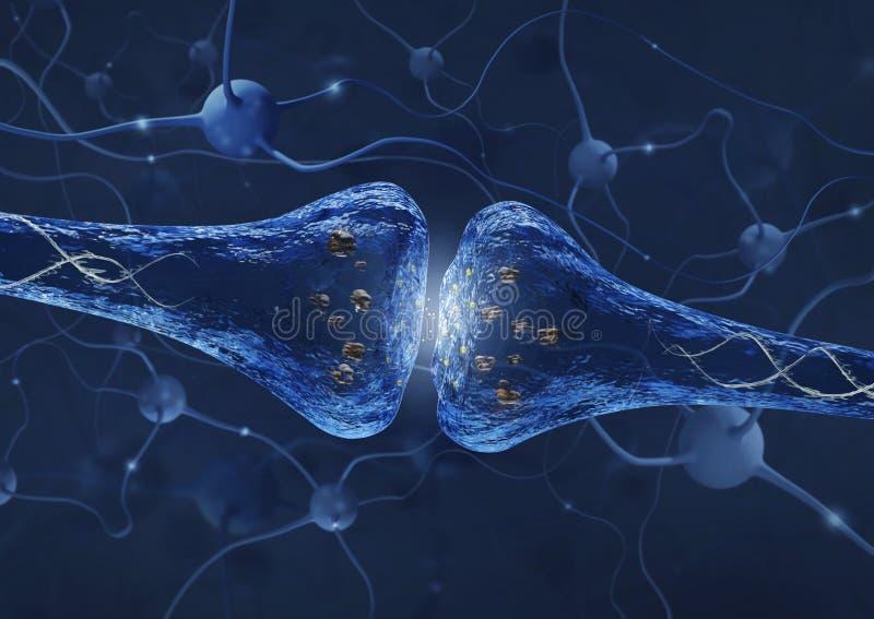 Processo da sinapse sobre o fundo da conexão do neurônio - 3D rendeu a imagem ilustração do vetor