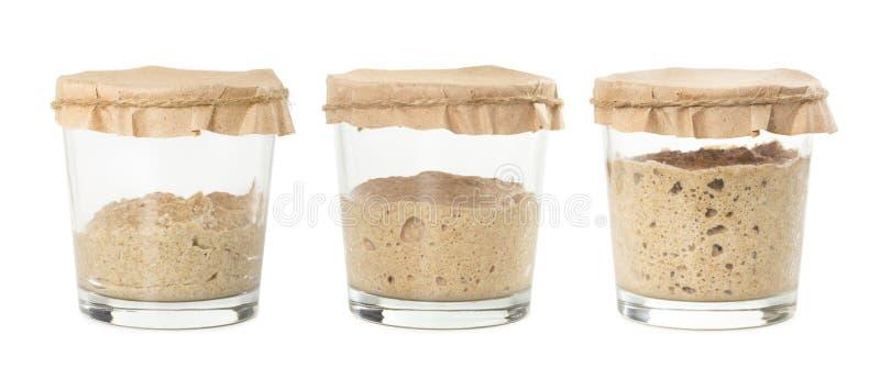 Processo de fermentação do sourdough caseiro do pão de centeio isolado fotos de stock
