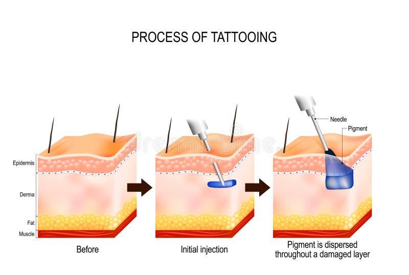 Processo di tatuaggio illustrazione vettoriale