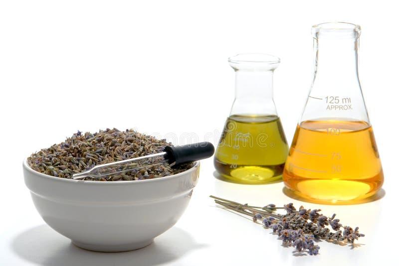 Processo do perfume de Aromatherapy da flor da alfazema imagens de stock royalty free