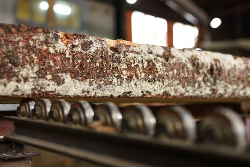 Processo do Woodworking Close-up da barra de madeira fotos de stock royalty free