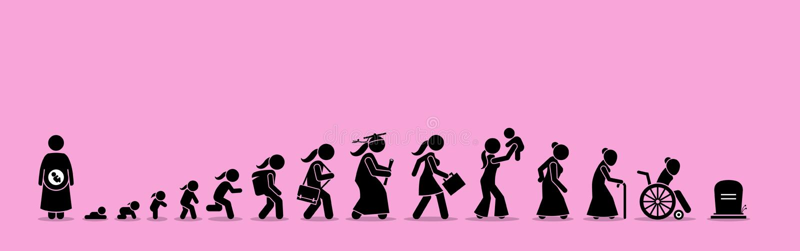 Processo fêmea do ciclo de vida e do envelhecimento ilustração royalty free