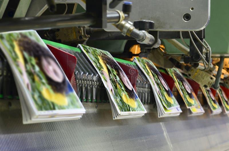Processus piquant de brochure et de magazine. images stock