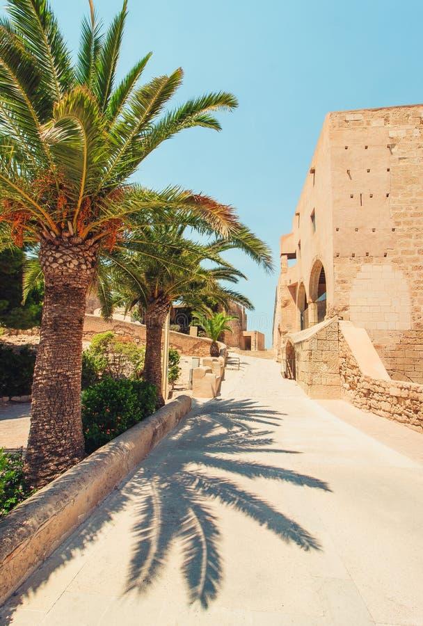 Prochains palmiers de vieux château espagnol et une rue étroite photographie stock libre de droits