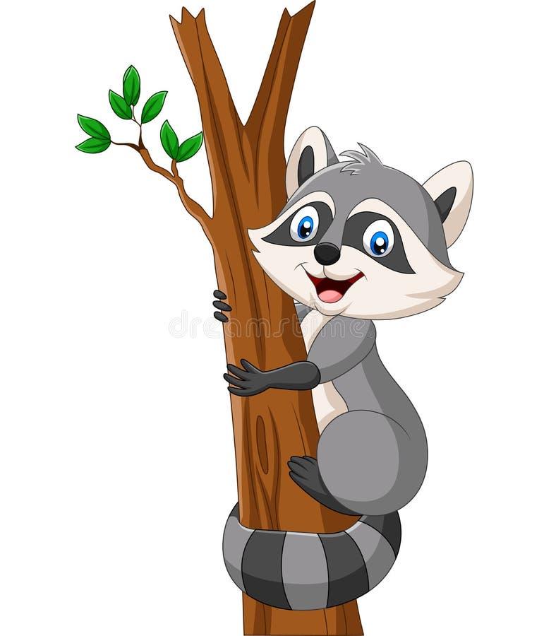 Procione del fumetto che scala sull'albero illustrazione di stock