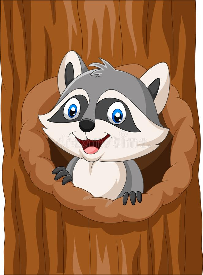 Procione del fumetto che si siede in cavit? di un albero royalty illustrazione gratis