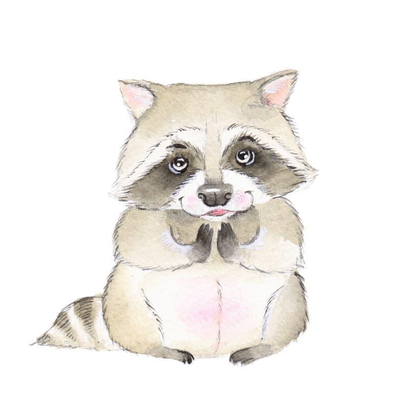 Procione sveglio watercolor royalty illustrazione gratis