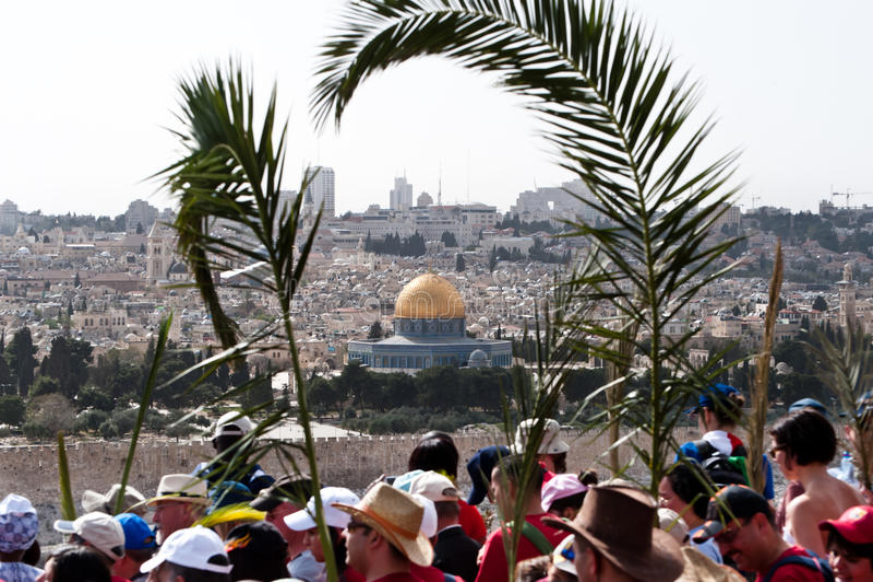 Procissão de domingo de palma em Jerusalem fotos de stock