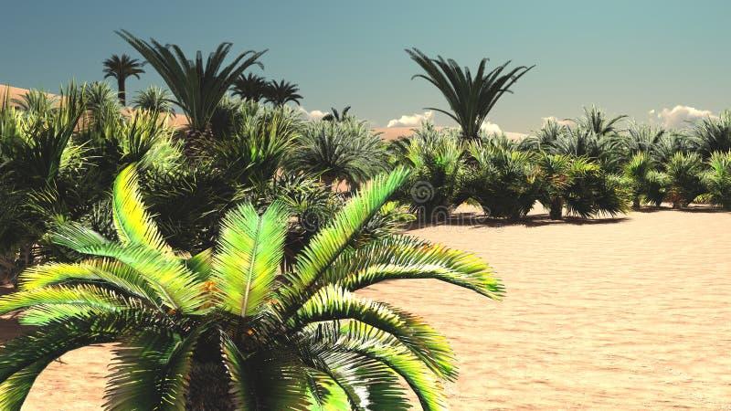Prodiguez la flore spectaculaire sur le désert plus tard dans la journée, le rendu 3d illustration libre de droits