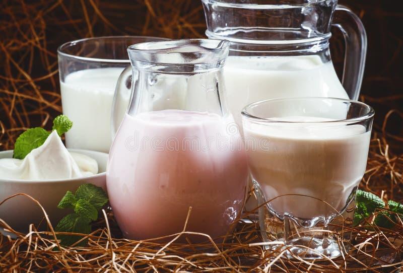 Prodotti lattier-caseario organici: il latte, crema, panna acida, ha fermentato al forno fotografie stock libere da diritti