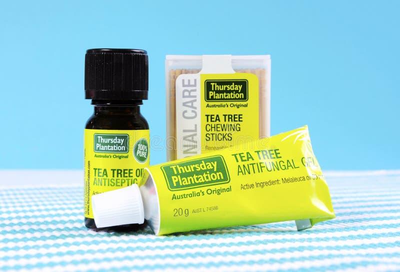 Prodotti petroliferi australiani dell'albero del tè fotografie stock