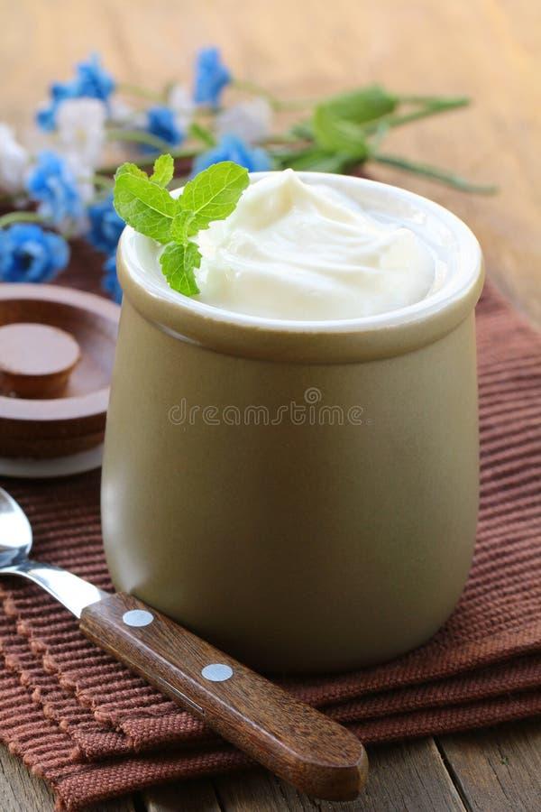 Prodotto lattiero-caseario (crema acida, yogurt,) fotografia stock libera da diritti