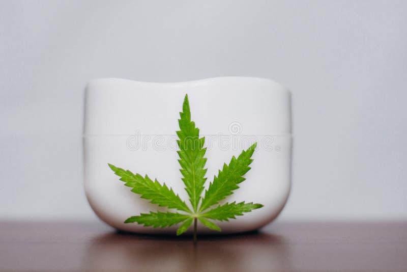 Prodotto naturale di oinment della cannabis Crema cosmetica da canapa naturale, lozione d'idratazione con il contenuto di CBD Cop immagine stock