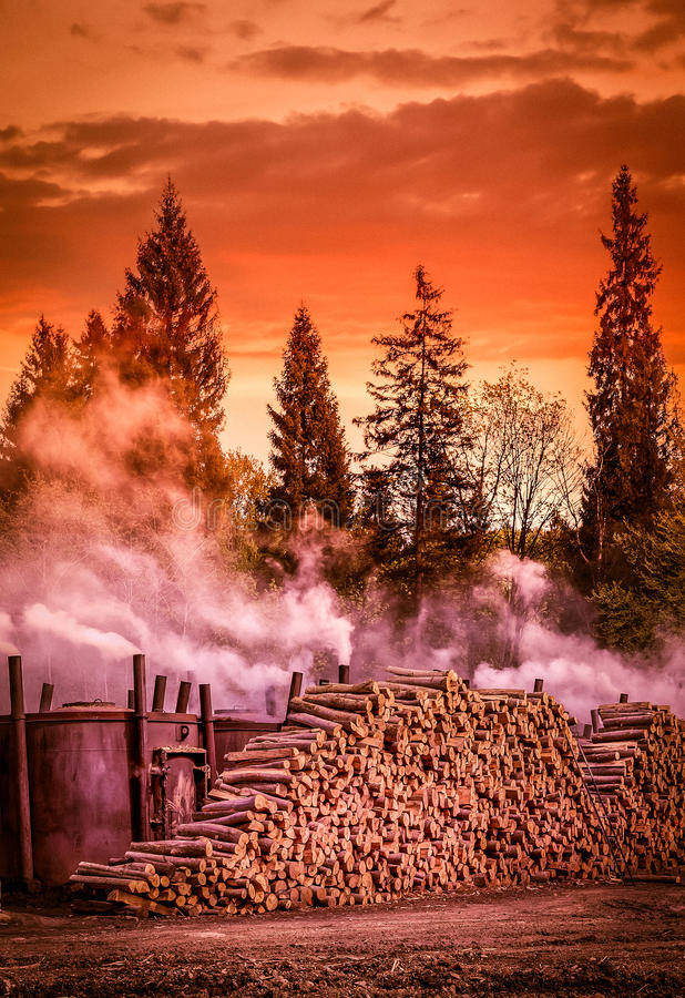Produção do carvão vegetal imagem de stock royalty free