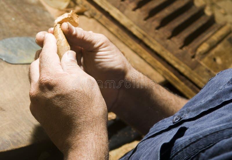 Produção do charuto do rolamento da mão imagem de stock royalty free