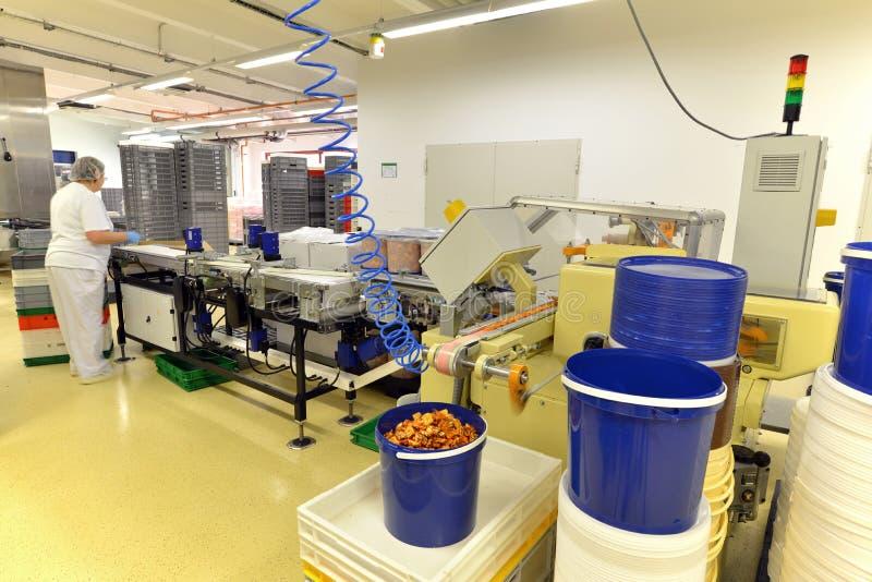 Producción de almendras garapiñadas en una fábrica para la industria alimentaria - conv imagenes de archivo