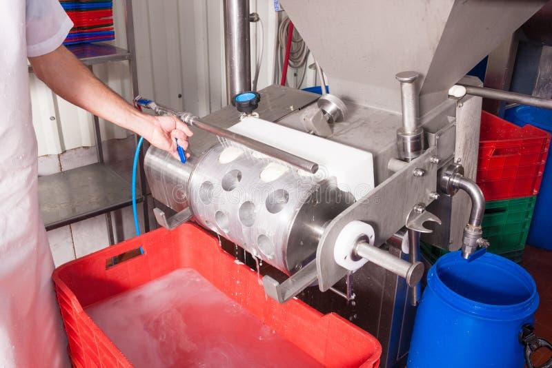 Producción de queso en fábrica foto de archivo