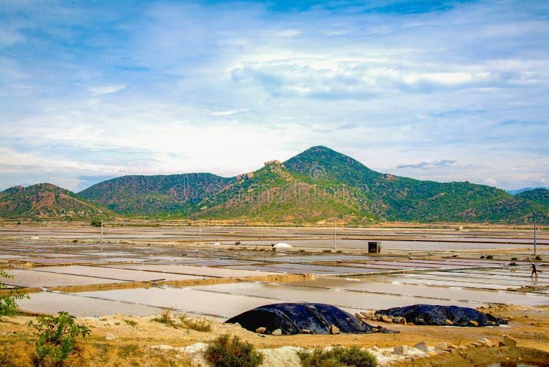 Producción de sal en Ninh Thuan fotos de archivo libres de regalías