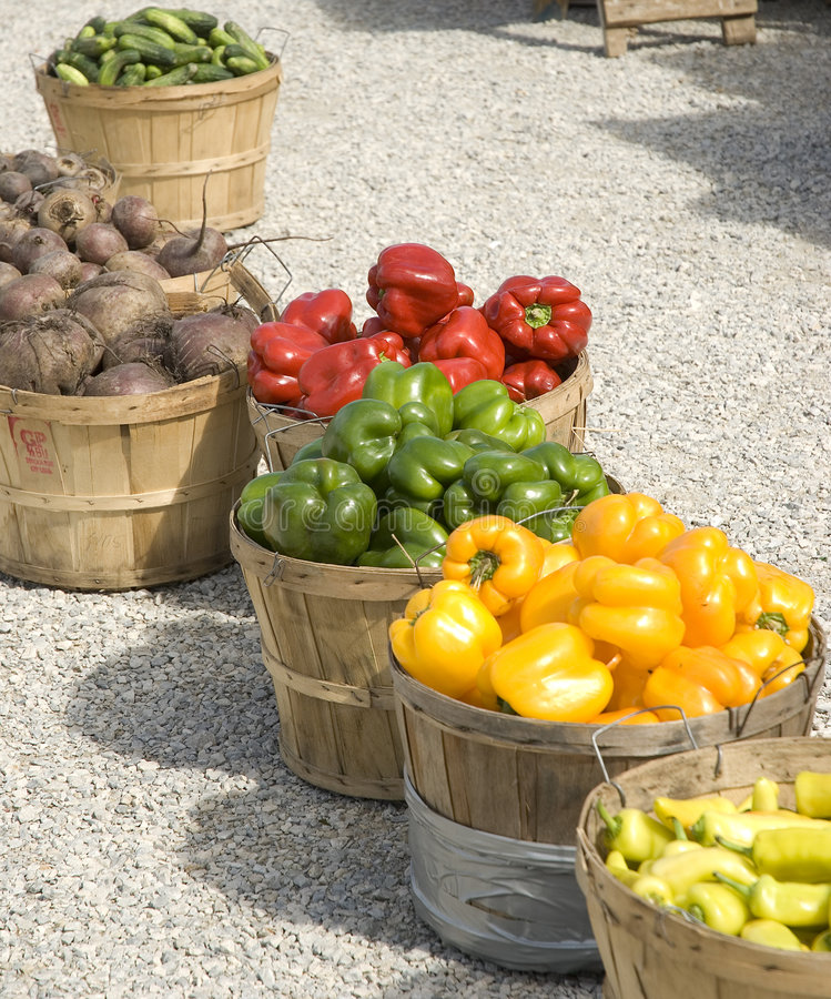 Download Produce stock image. Image of fall, food, peppers, beets - 3196607