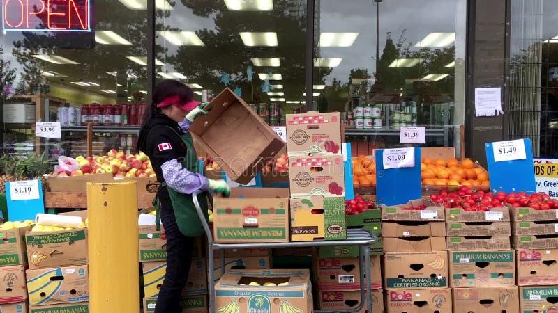 produce clerk stocking vegetable for sale stock video