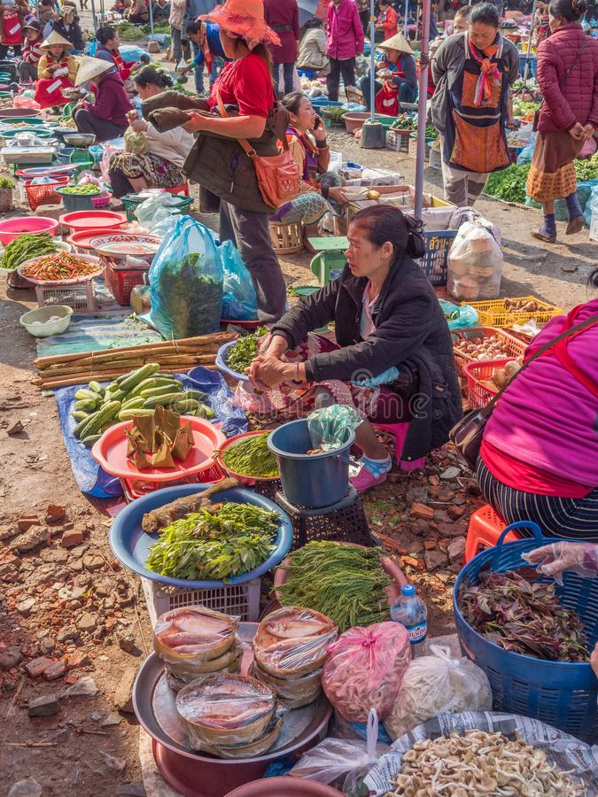 Produce and people at market. Phonsavanh, Laos. People selling wide variety of wild-caught animals, sometimes illegally traded, foraged and other products at royalty free stock photography