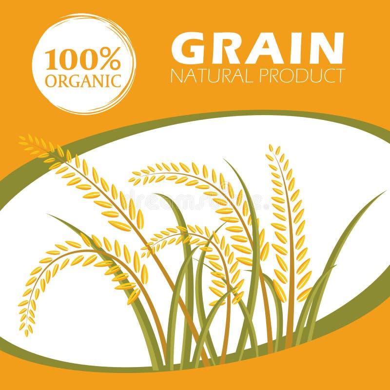 Producten van de padie de organische korrel - het Vectorontwerp van het Lay-outmalplaatje vector illustratie