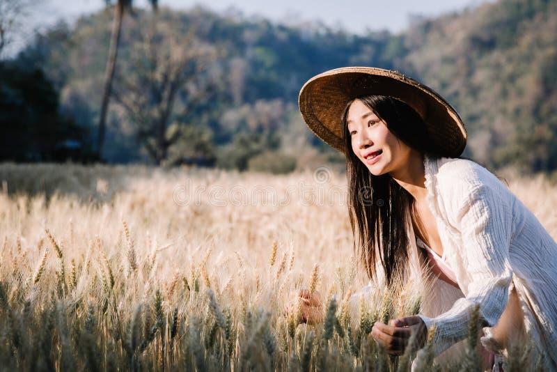 Producteur de fille dans la chemise de plaid dans le domaine de bl? sur le fond de coucher du soleil photos stock