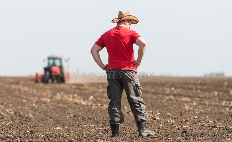 Producteur examing les champs de blé plantés photo stock