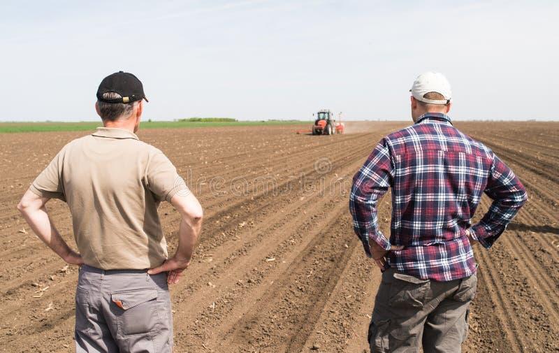 Producteurs examing les champs de blé plantés photos stock