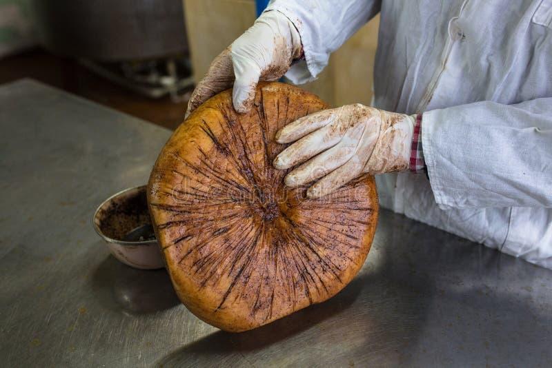 Productie van kaas in zuivelfabriek, Monterey Jack royalty-vrije stock fotografie