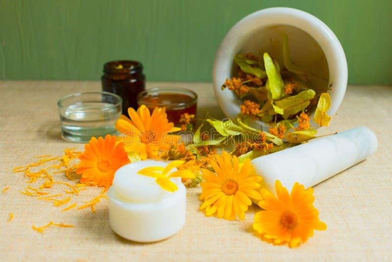 Productie van natuurlijke schoonheidsmiddelen Geneeskrachtige bloemen van calendula, kamille, munt en kruidentint Geneeskrachtige royalty-vrije stock afbeeldingen