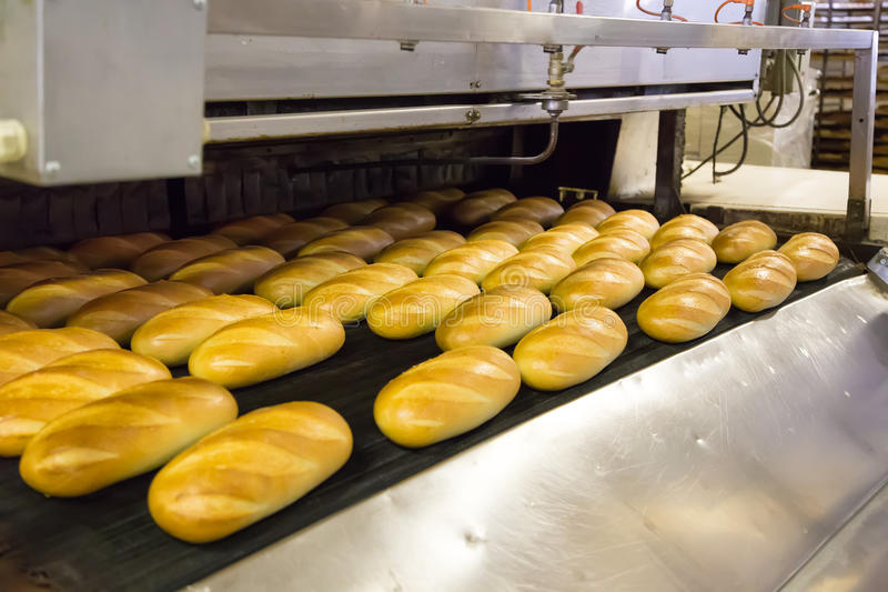 Production of bread in factory royalty free stock photo